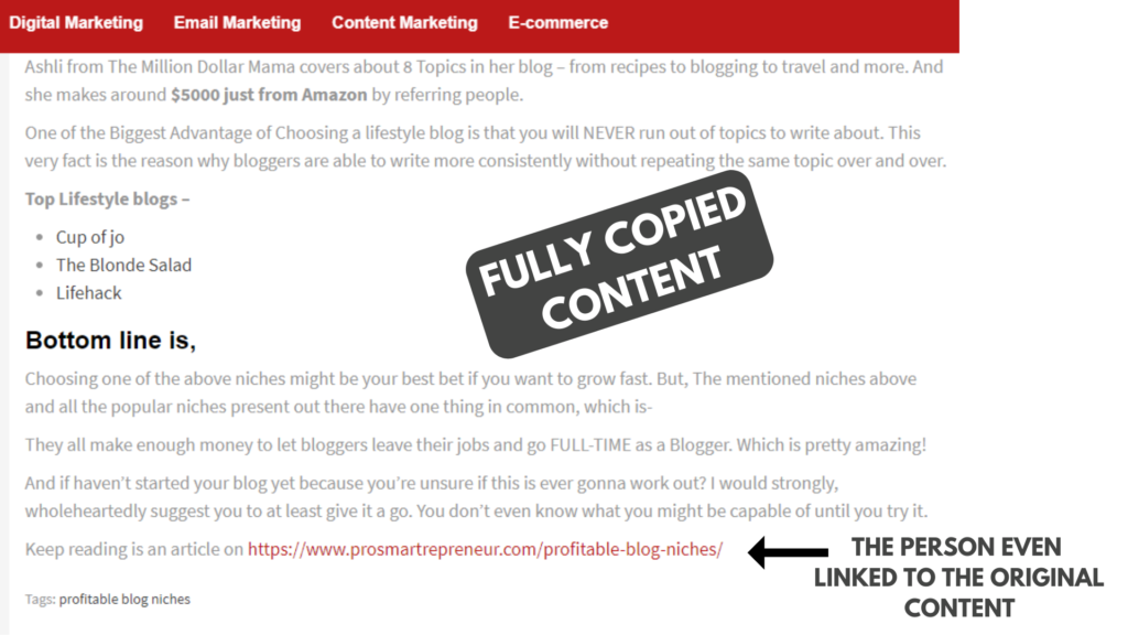 Legally Protect Your Blog Against Identity Theft & Lawsuits (Why And How to) copied content